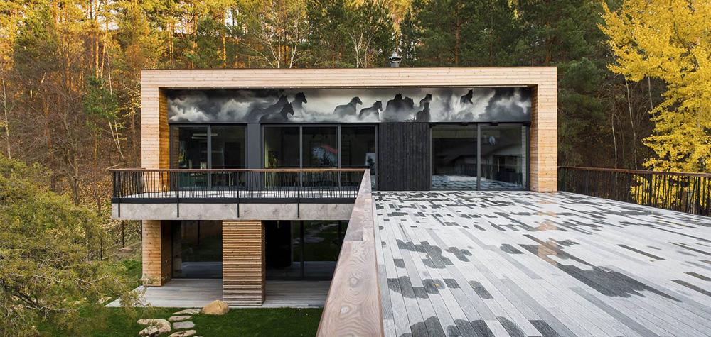 Дом в Лесниках - Бассейн 7
